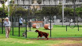 El PP anima al Tripartito a crear una nueva área para Perros en el Parque de LasTorres