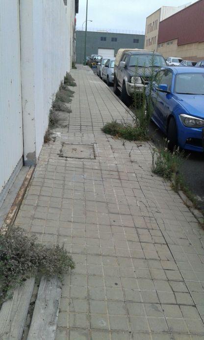 Abandono zona verde Sebadal (1)