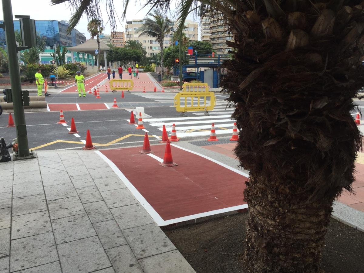 El PP lamenta que la primera propuesta del Tripartito para facilitar la circulación de las bicis en la ciudad se salde con un carril bici que choca contra unapalmera