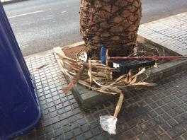 basura-arenales-2