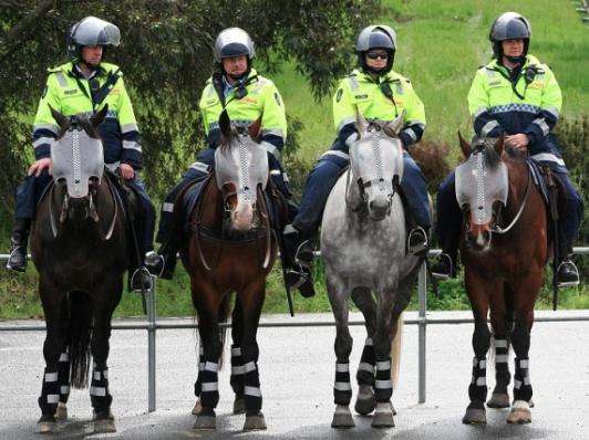 El PP aconseja priorizar las necesidades reales de la Policía Local frente a la fotoestéril
