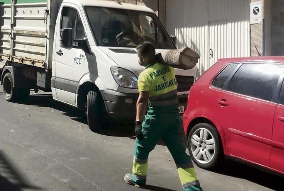 """El Tripartito """"mata-árboles"""" esconde los informes que deberían justificar la tala de más de 100 ejemplares en LaGalera"""