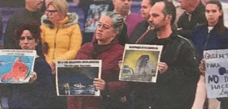 El PP solicita a Hidalgo el cese inmediato de Álvarez por sus ataques contra un proyecto estratégico para la ciudad como el Acuario Poema delMar