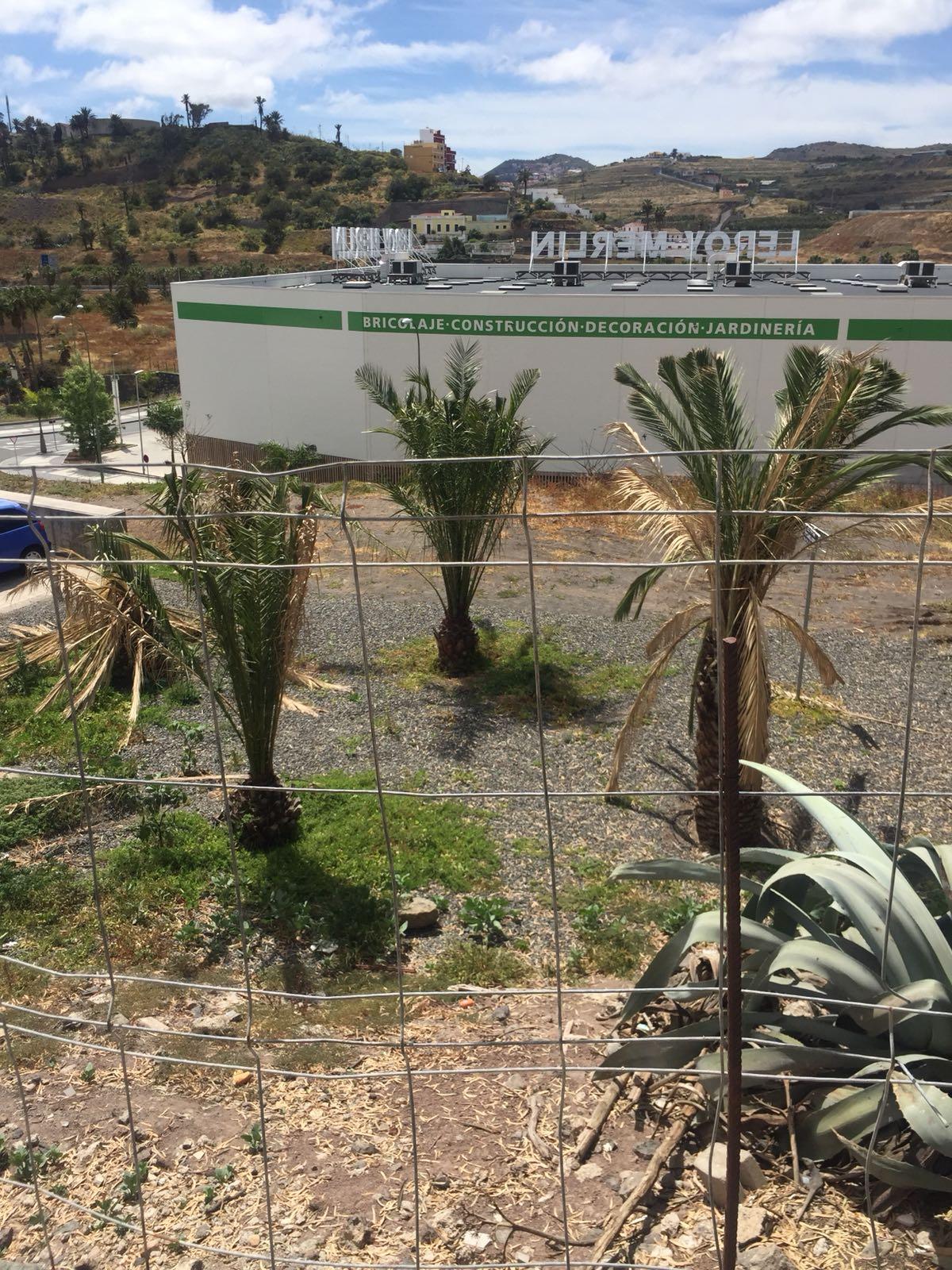 El PP lamenta que el Tripartito  actúe como una apisonadora en el Corredor Verde Luis GarcíaCorrea